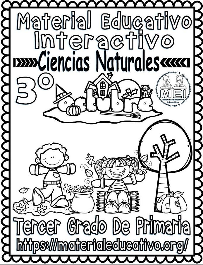 Material Interactivo Del Tercer Grado De Ciencias Naturales