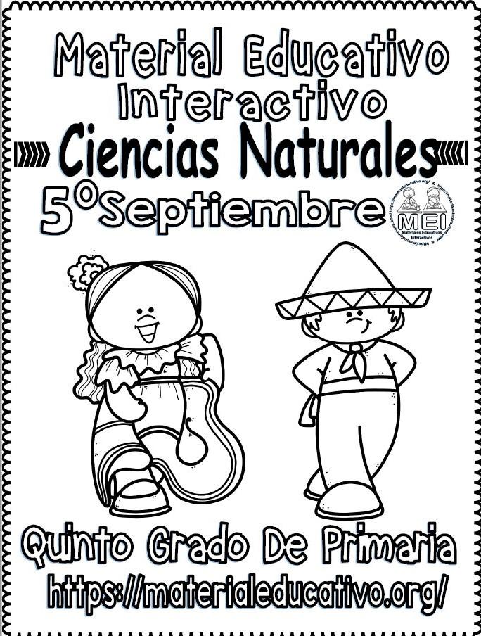Material Interactivo Del Quinto Grado De Ciencias Naturales